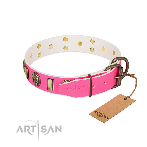 Durable embellishments on natural genuine leather dog collar for your doggie