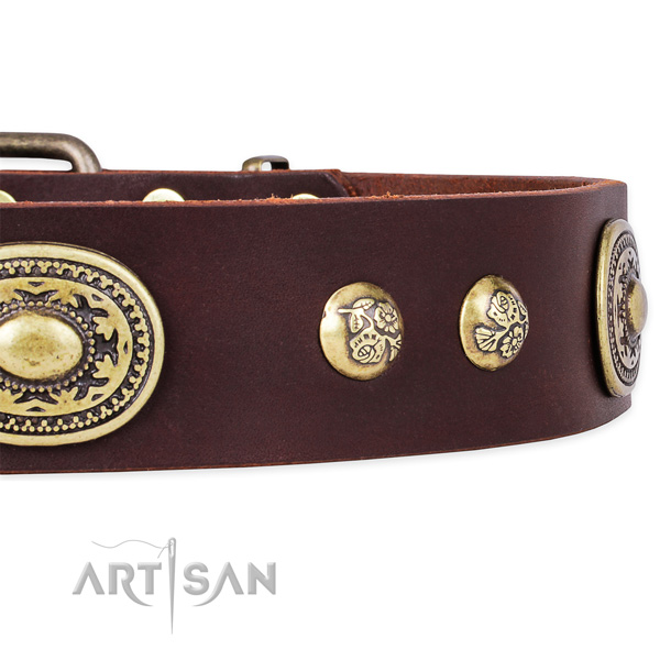 Convenient full grain natural leather collar for your stylish four-legged friend