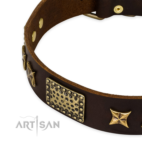 Full grain natural leather collar with strong fittings for your lovely canine
