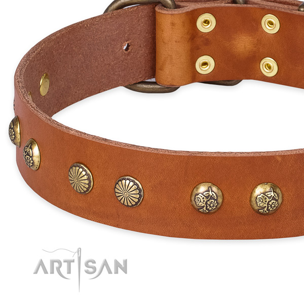 Full grain genuine leather collar with corrosion proof D-ring for your lovely pet