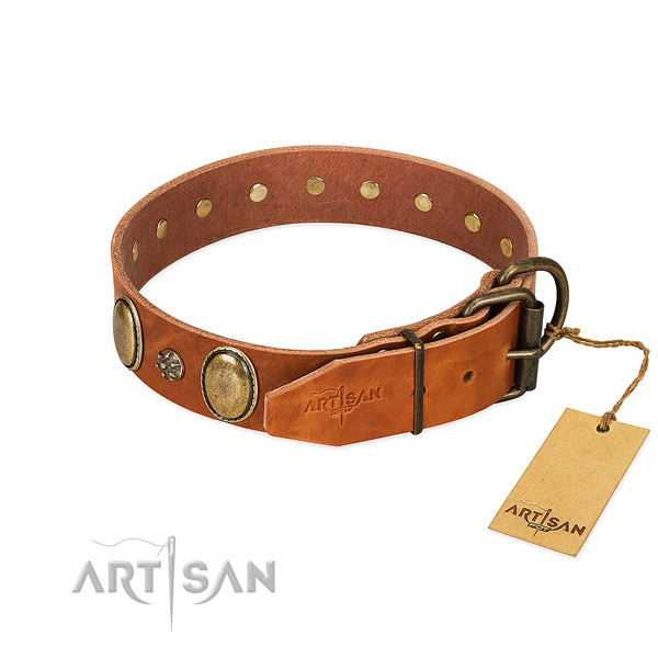 Fancy walking flexible full grain leather dog collar