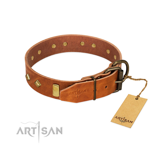 Walking full grain genuine leather dog collar with trendy adornments
