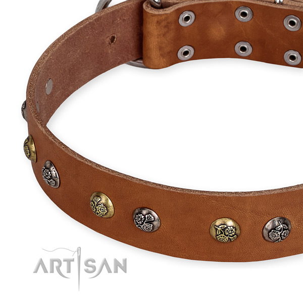 Full grain natural leather dog collar with incredible corrosion resistant decorations
