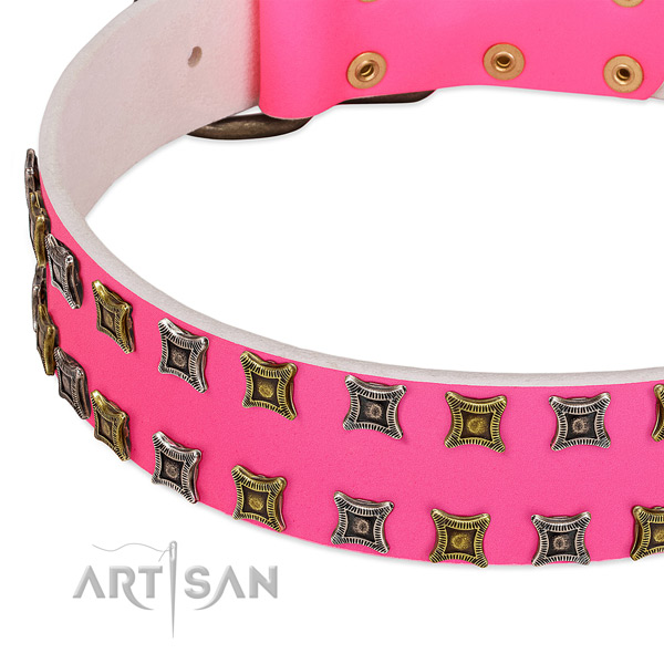 Genuine leather dog collar with significant adornments