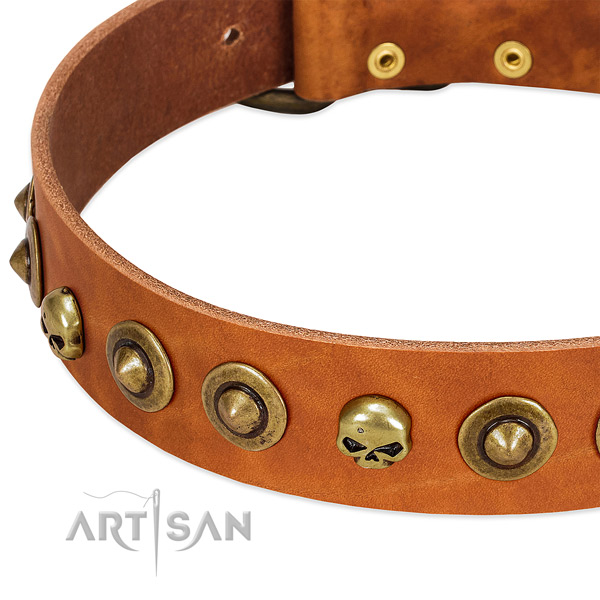Exceptional decorations on genuine leather collar for your four-legged friend