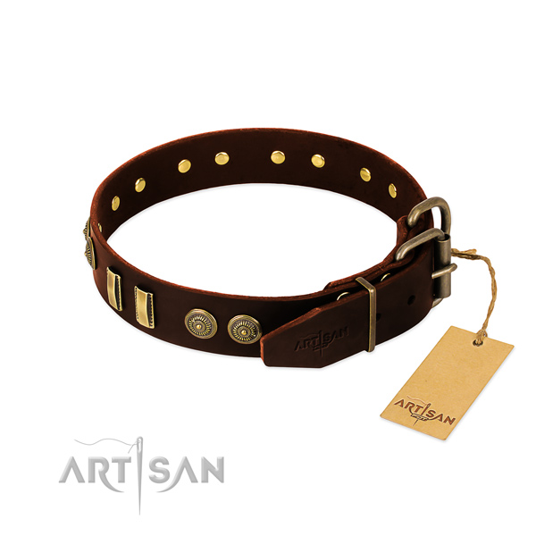 Rust resistant studs on natural leather dog collar for your pet