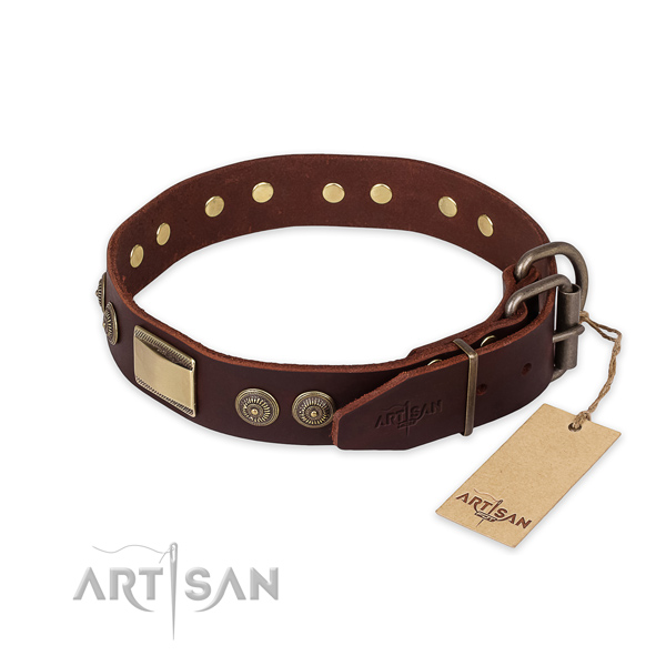 Durable D-ring on full grain leather collar for daily walking your pet