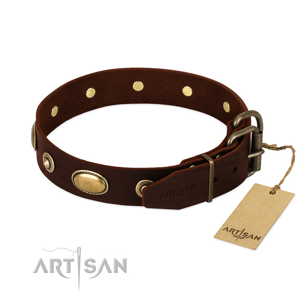 Rust-proof buckle on leather dog collar for your dog