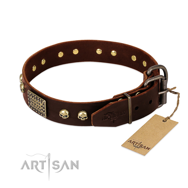 Rust resistant studs on comfortable wearing dog collar