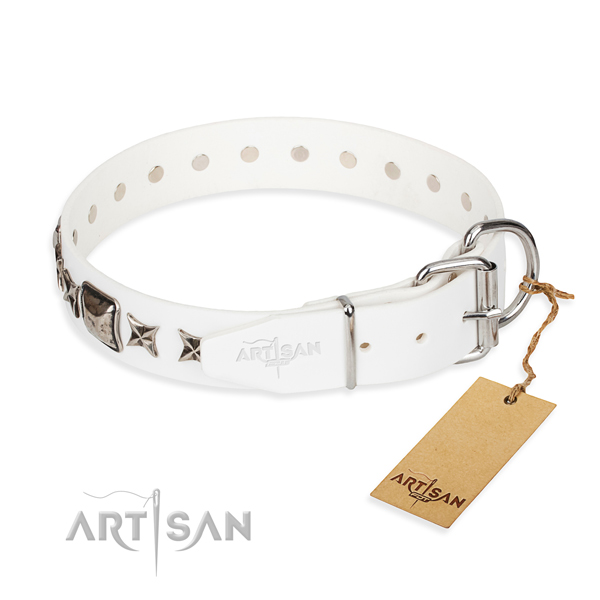 Quality studded dog collar of genuine leather
