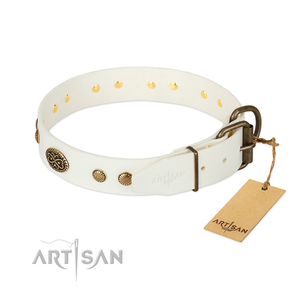 Corrosion proof traditional buckle on full grain leather dog collar for your pet