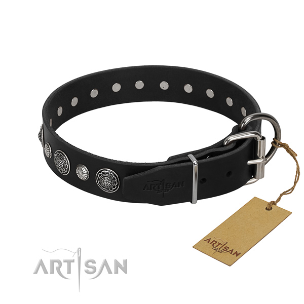 Finest quality leather dog collar with stylish design embellishments