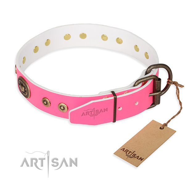 Full grain leather dog collar made of reliable material with rust resistant adornments