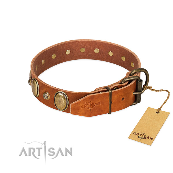 Trendy leather dog collar with durable hardware
