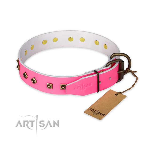 Rust-proof fittings on full grain leather collar for daily walking your canine