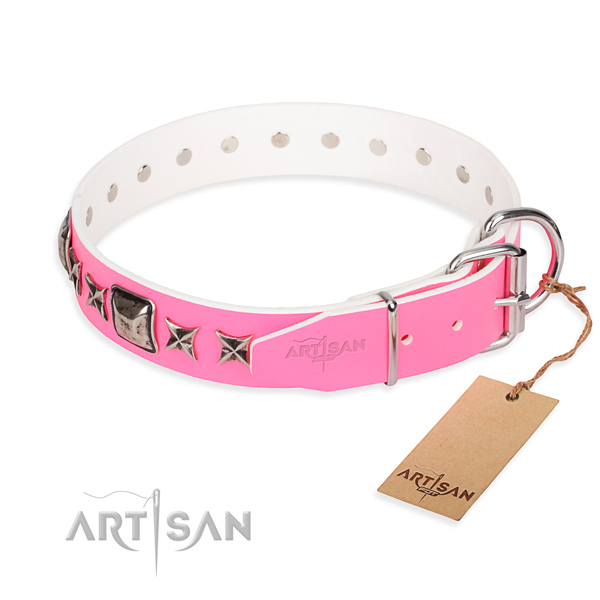 Finest quality embellished dog collar of full grain leather