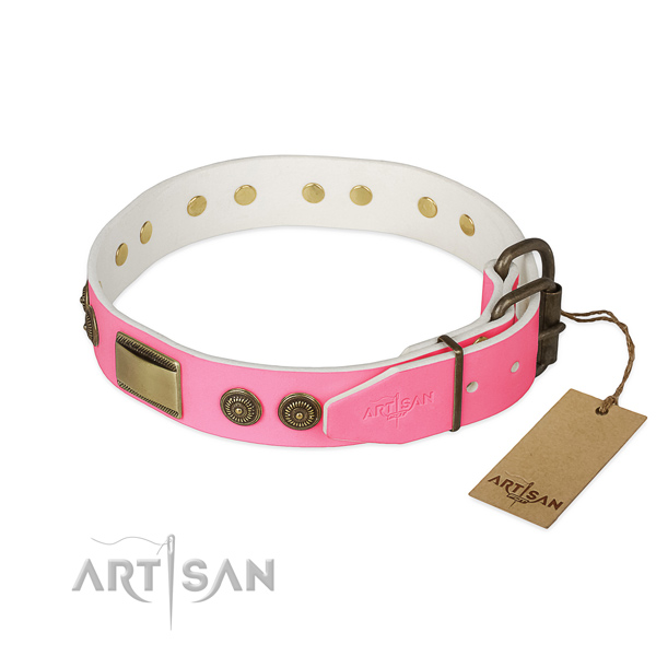Strong D-ring on walking dog collar