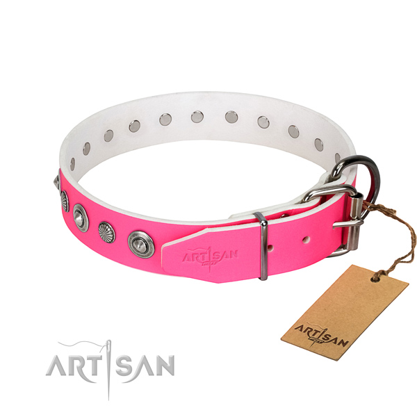 Durable natural leather dog collar with trendy adornments