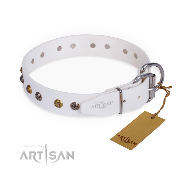 Full grain leather dog collar with unusual reliable decorations