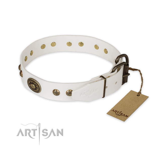 Durable traditional buckle on full grain genuine leather collar for basic training your pet