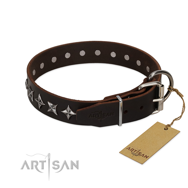 Walking studded dog collar of strong full grain genuine leather