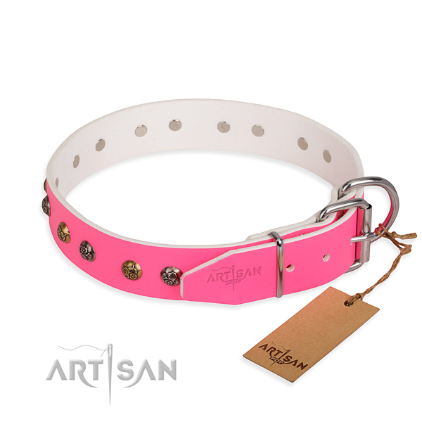 Full grain natural leather dog collar with extraordinary rust resistant studs
