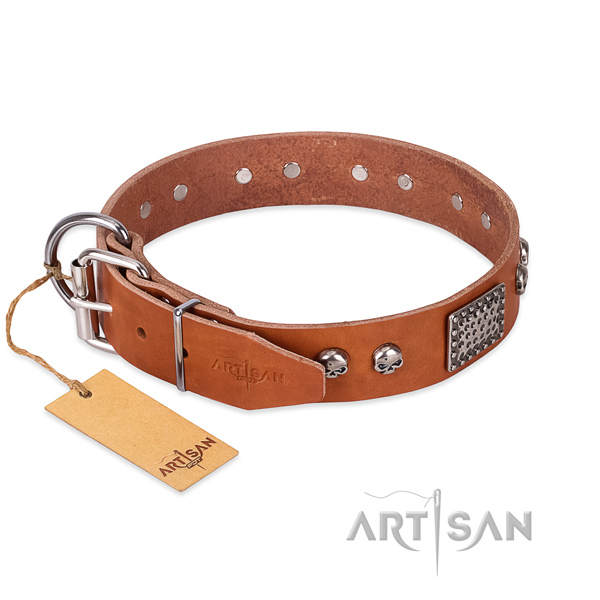 Corrosion resistant hardware on walking dog collar
