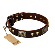 """Magic Amulet"" Brown Leather dog Collar with Skulls and Plates"