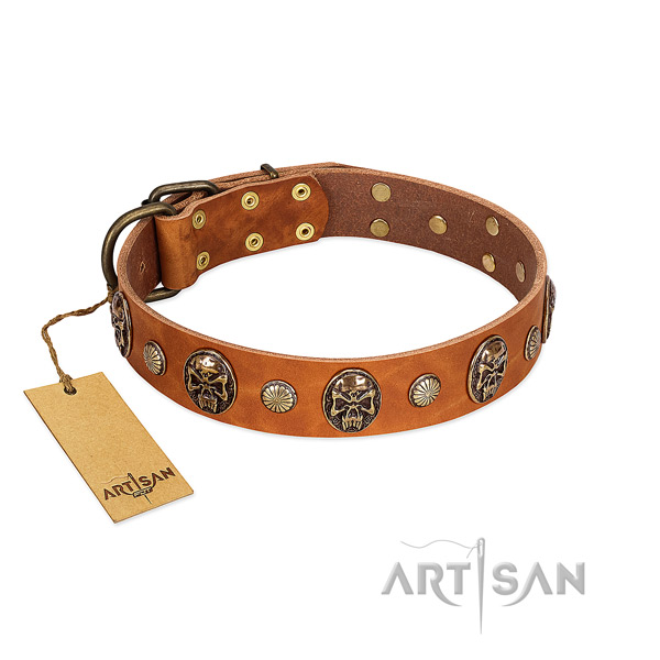 Unusual full grain genuine leather dog collar for everyday walking