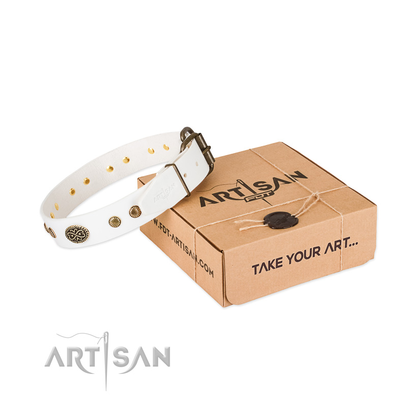 Durable studs on full grain leather dog collar for your dog