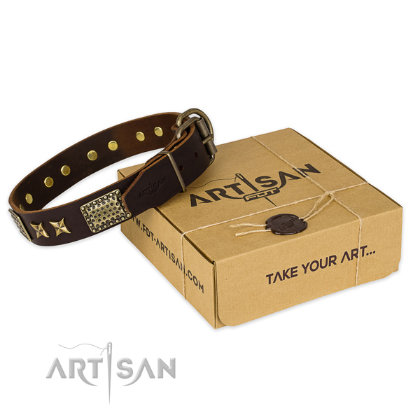Reliable buckle on full grain genuine leather collar for your attractive doggie