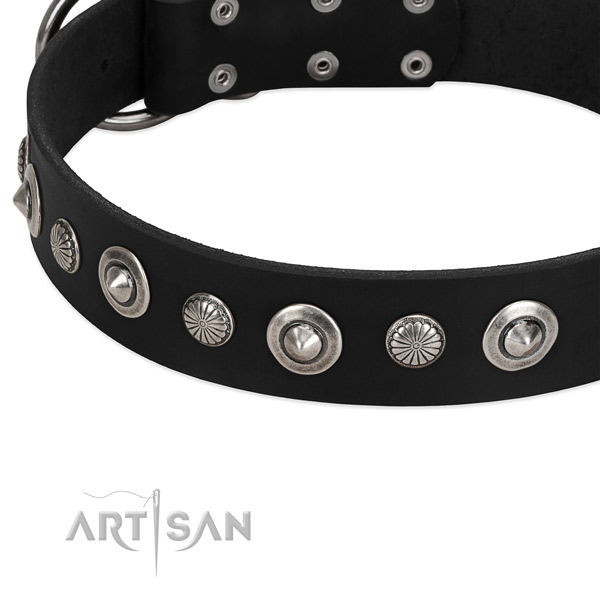 Amazing studded dog collar of reliable full grain natural leather