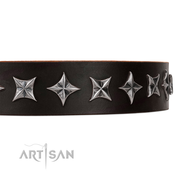 Comfortable wearing decorated dog collar of high quality full grain leather