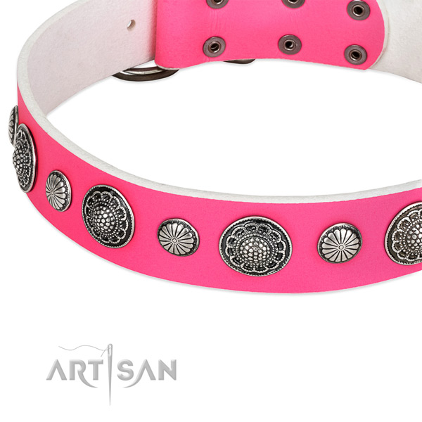 Full grain genuine leather collar with durable hardware for your attractive canine