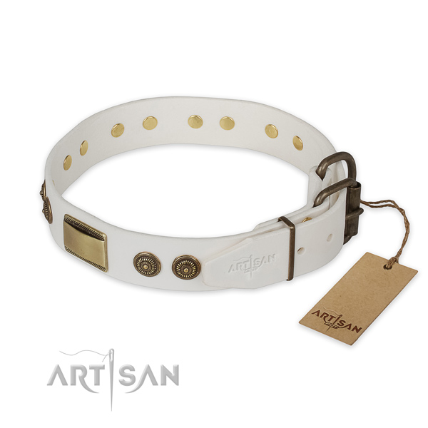 Strong buckle on genuine leather collar for stylish walking your four-legged friend