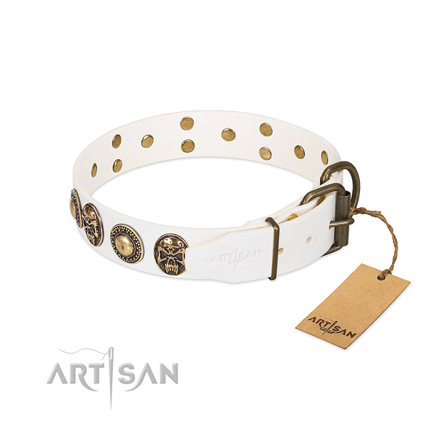 Reliable decorations on basic training dog collar