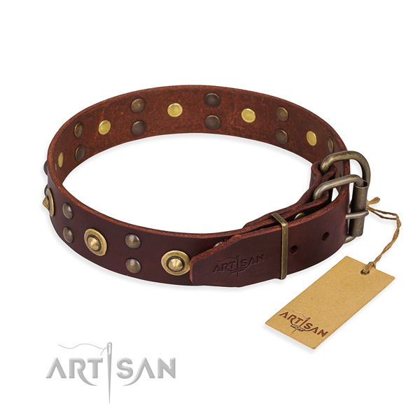 Reliable D-ring on leather collar for your beautiful dog