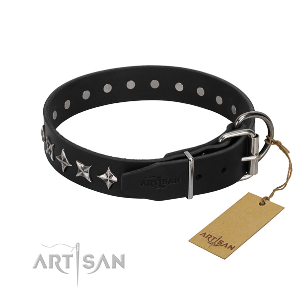 Comfortable wearing studded dog collar of fine quality full grain natural leather