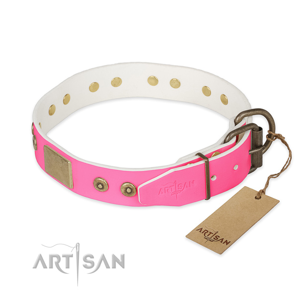 Strong traditional buckle on handy use dog collar