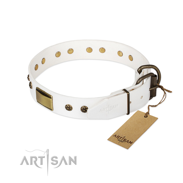 Full grain genuine leather dog collar with strong fittings and embellishments