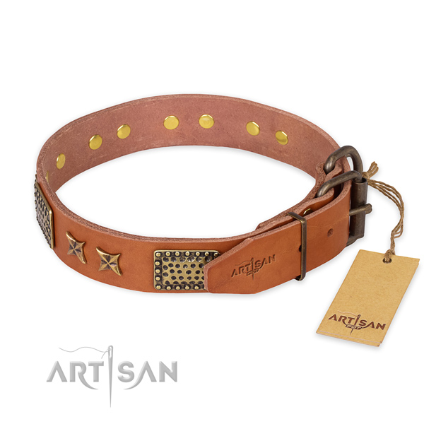 Corrosion resistant traditional buckle on natural genuine leather collar for your handsome canine