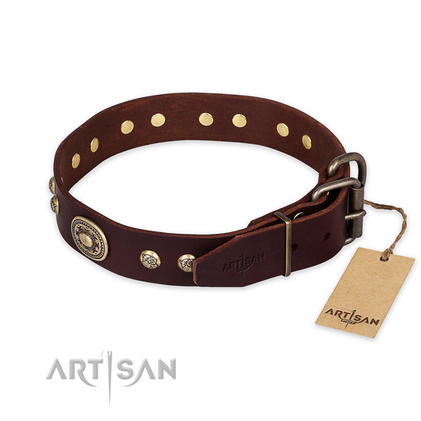 Strong buckle on full grain leather collar for basic training your four-legged friend