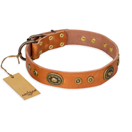 """Dandy Pet"" FDT Artisan Handcrafted Tan Leather dog Collar"