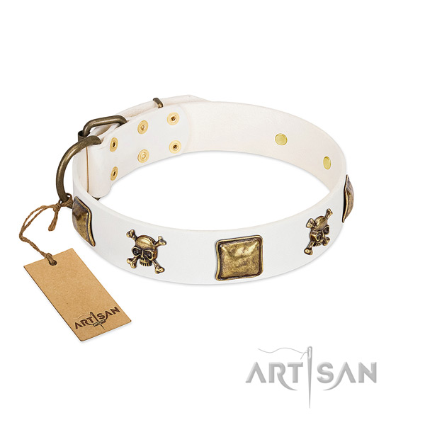 Extraordinary genuine leather dog collar with durable studs