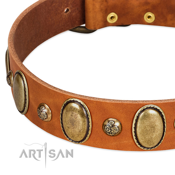 Natural leather dog collar with designer decorations
