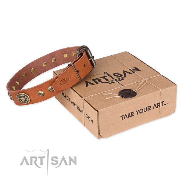 Rust resistant buckle on full grain natural leather dog collar for easy wearing
