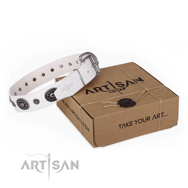 High quality leather dog collar handcrafted for comfortable wearing
