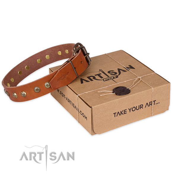 Corrosion proof hardware on leather collar for your impressive four-legged friend