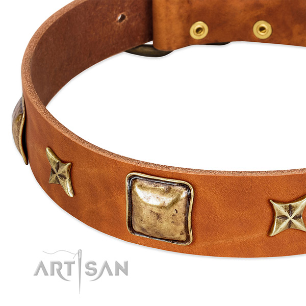 Durable D-ring on leather dog collar for your four-legged friend