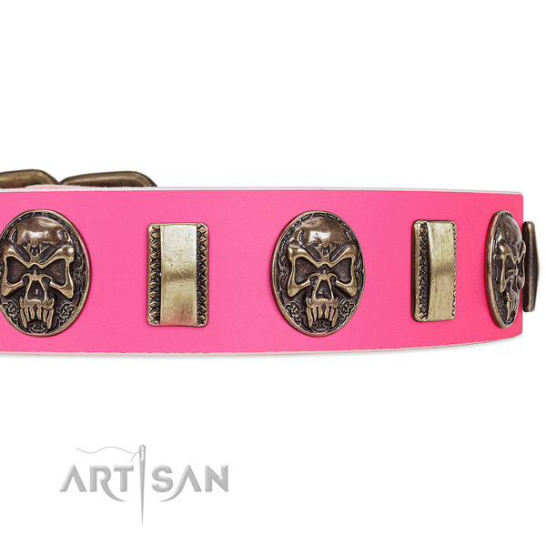 Corrosion resistant decorations on full grain natural leather dog collar for your canine